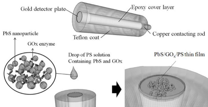 Fast synthesis of PbS nanoparticles for fabrication of glucose sensor with enhanced sensitivity